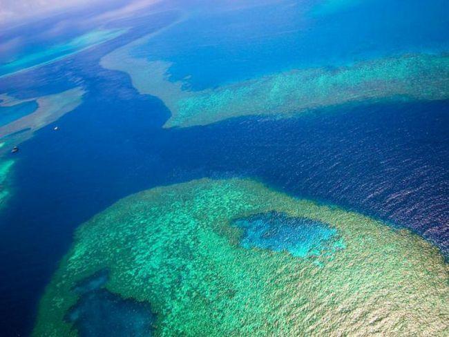 23 Фото, підтверджують, що великий бар`єрний риф - ідеальне місце для відпочинку