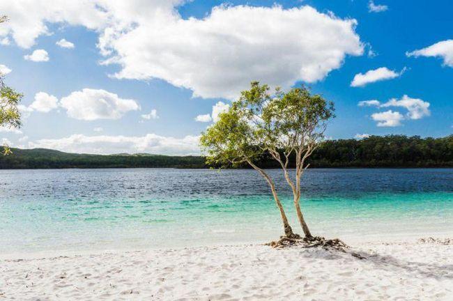 50 Речей, які слід зробити під час подорожі в австралію і нову зеландію