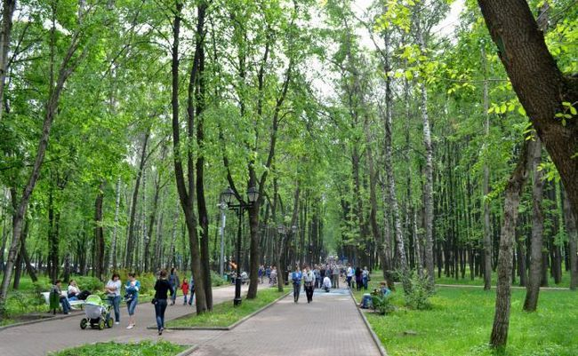Бабушкінський парк