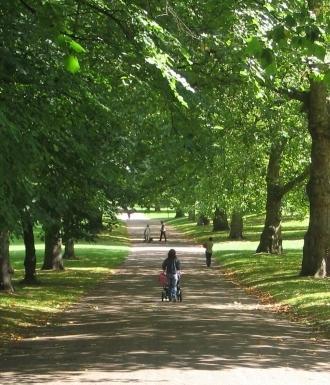 Що таке гайд-парк для місцевих жителів і туристів