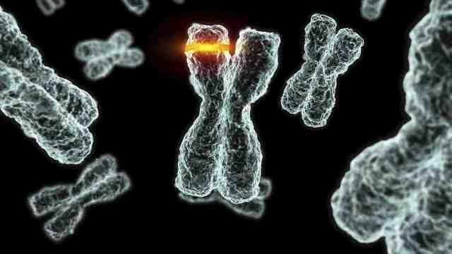 Що таке мутація?
