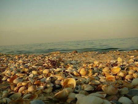 Пам`ятки бердянська - море, повітря і вода?