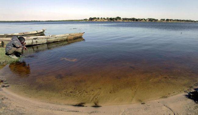 озеро чад в Африці
