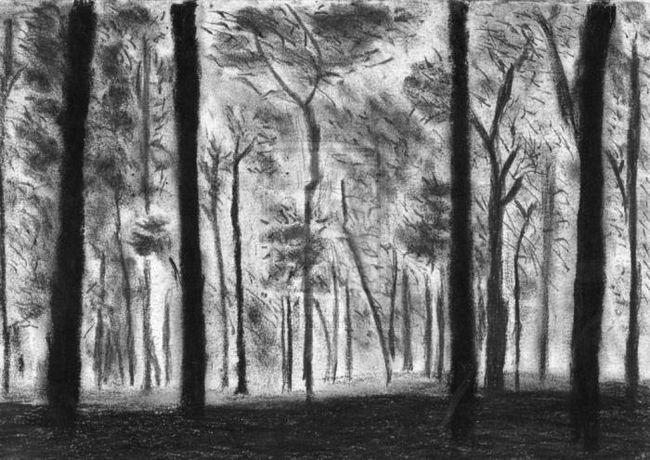 Як намалювати ліс. Привчаємо дітей берегти природу