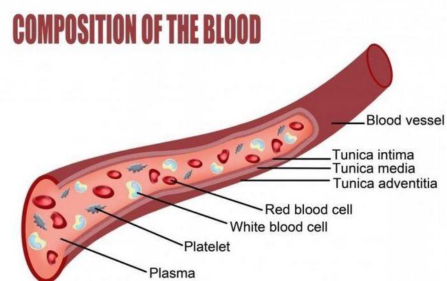 Як знизити тромбоцити в крові?