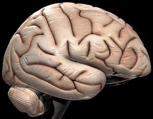 як поліпшити кровообіг головного мозку