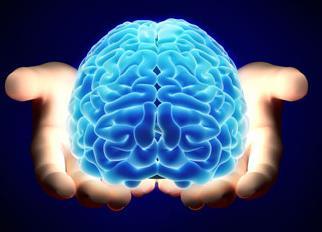як змусити мозок працювати