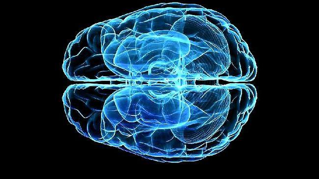як змусити мозок працювати на 100