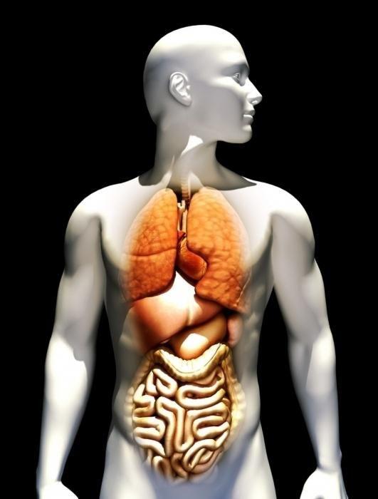препарати для очищення печінки