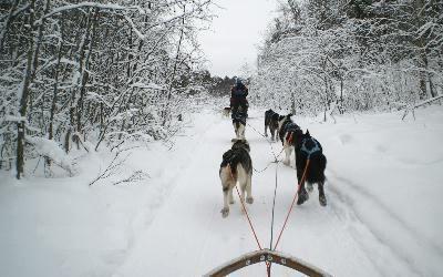 куди поїхати відпочити взимку