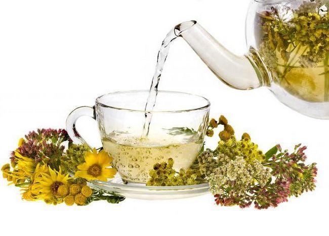трав`яний чай рецепти в домашніх умовах