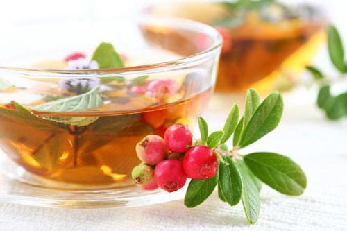 трав`яні чаї на кожен день рецепти