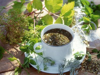 які трав`яні чаї можна пити