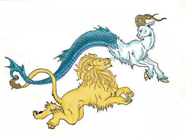 Леви і козероги. Сумісність.