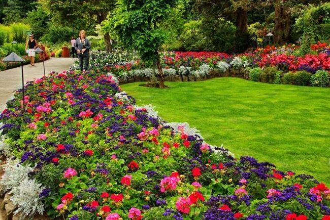 Оформлення квітників - твори і милуйся