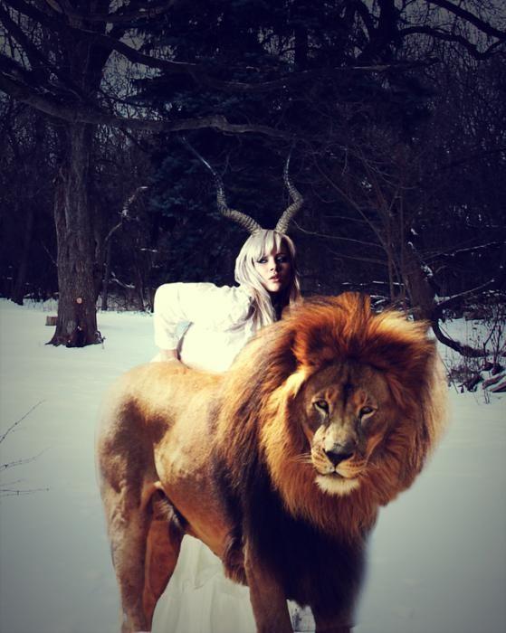 овен підходить до лева