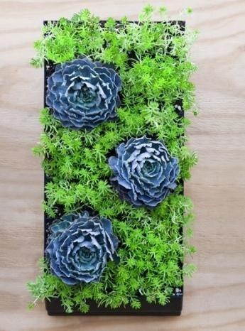 настінні композиції з штучних квітів