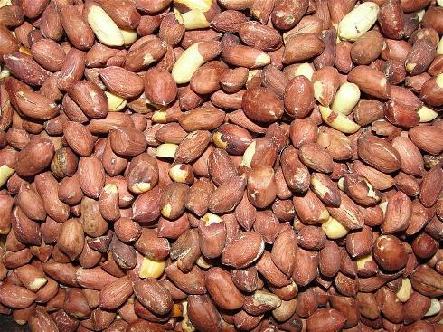 Чому сенегал називають арахісової республікою: трохи історії та економіки