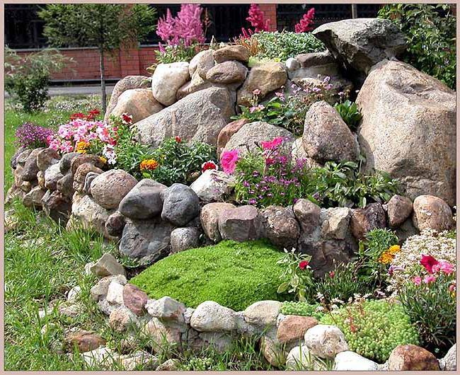 Підбираємо рослини для альпійської гірки