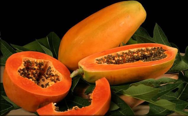 Корисні властивості папайї - для краси та здоров`я