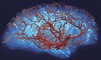 препарати для поліпшення роботи мозку