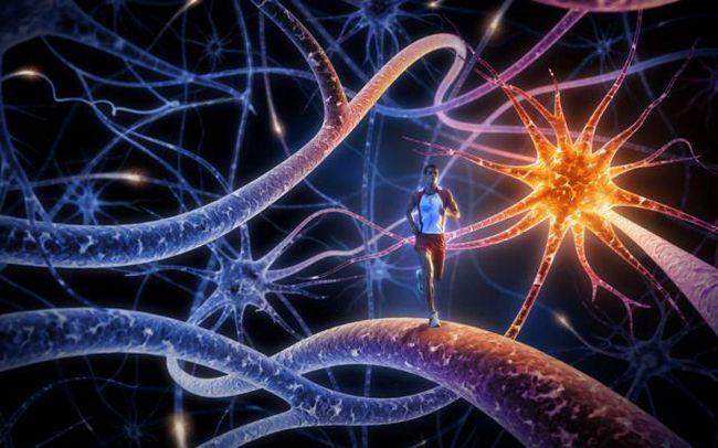 таблетки для поліпшення роботи мозку