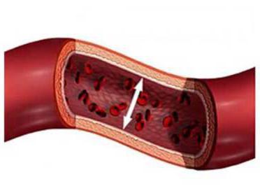 вегето судинні препарати