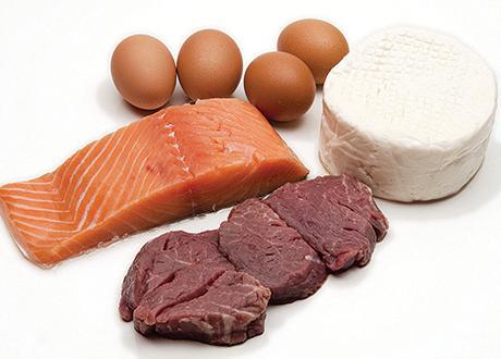 Рослинні білки і тварини ... Для чого вони потрібні організму?