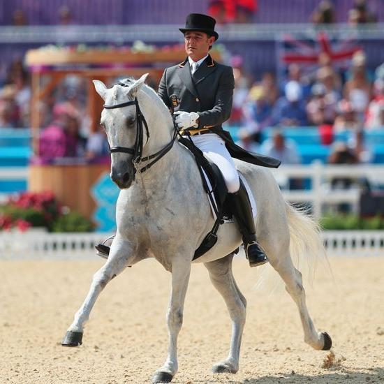 Види кінного спорту - різноманіття і пишність верхової їзди
