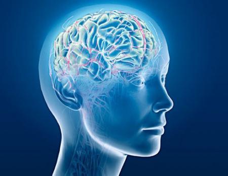 Вітаміни для роботи мозку