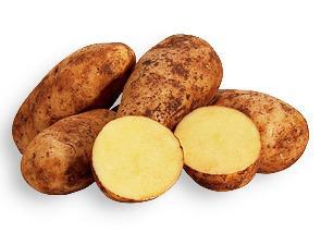 ефективне вирощування картоплі